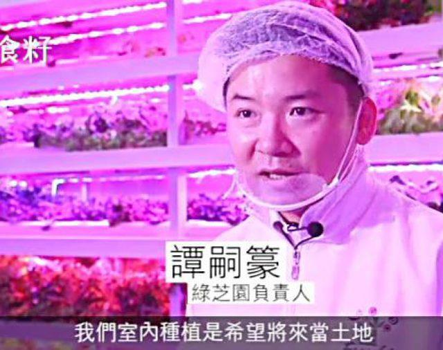 【蘋果日報】魚菜共生 無毒革命