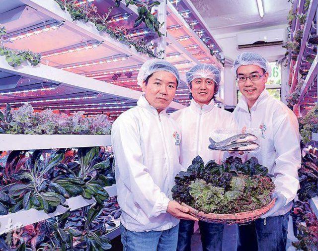 【明報】魚菜共生技術 放眼多國市場