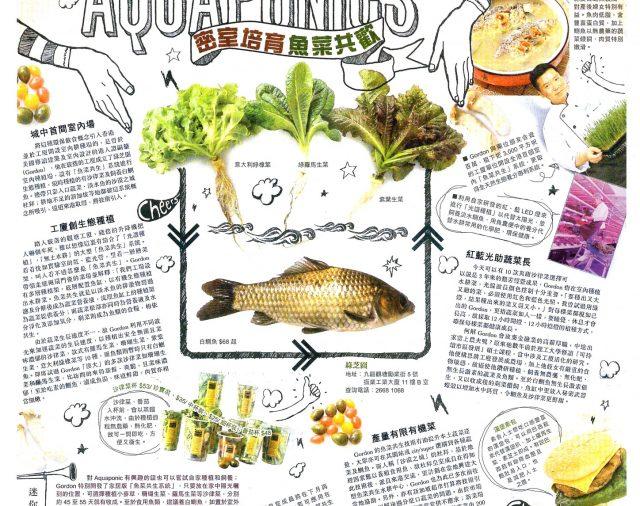 【東方日報】密室培育 魚菜共歡