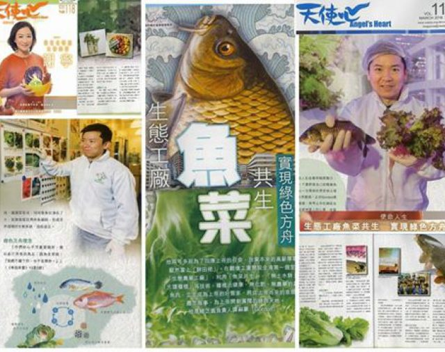 【天使心】生態工廠魚菜共生 實現綠色方舟