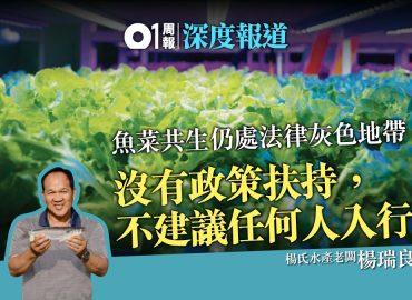 【香港01】室內養魚兼種菜 高科技養殖成漁業出路?