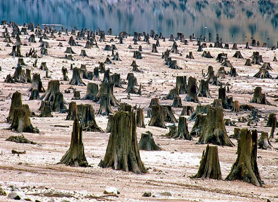 Land_Desertification
