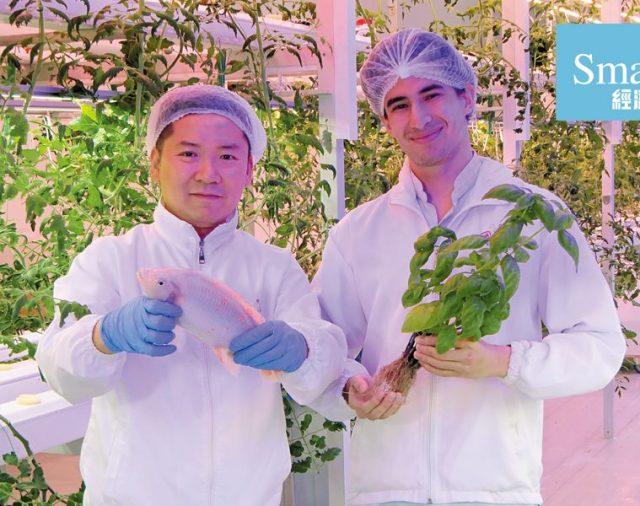 【經濟一週】70後棄厚職賣樓創業 搞室內耕種吸金3,000萬元
