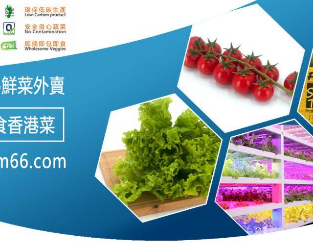 初五Farm66正式外賣速運開年-香港人食香港菜