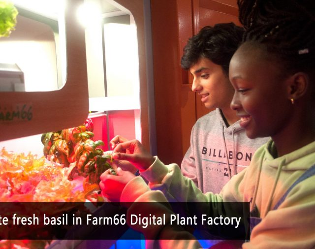 "Li Po Chun United World College to visit  Farm66 ""Digital plant"" for the STEM program"