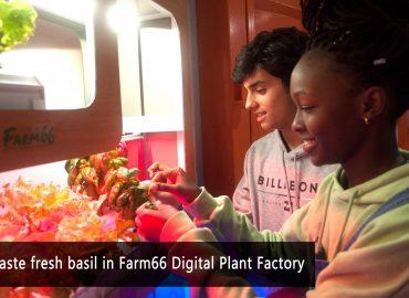 Li Po Chun United World College to visit  Farm66 for the STEM program