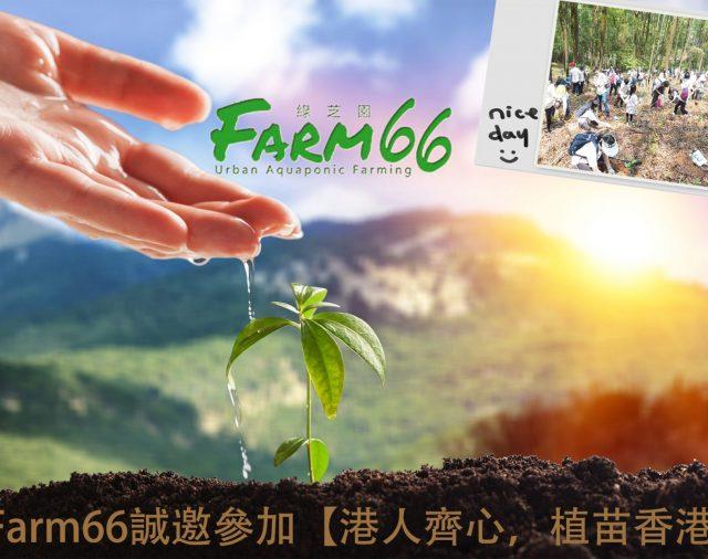 馬鞍山山火焚燒20小時 Farm66誠邀參加【港人齊心,植苗香港】,發揮獅子山精神!