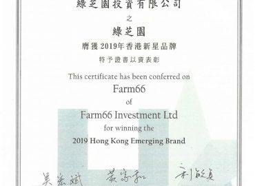 Farm 66 膺獲2019年香港新星品牌選舉 😀 香港品牌發展局Hong Kong Brand Development Council