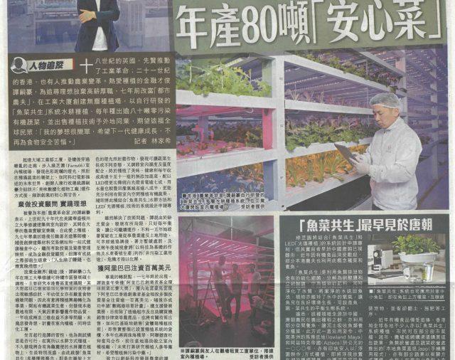 星島日報-Farm66外銷【貨櫃箱】系統,擬室內種人參,都市農夫工廈種植,年產80噸安心菜