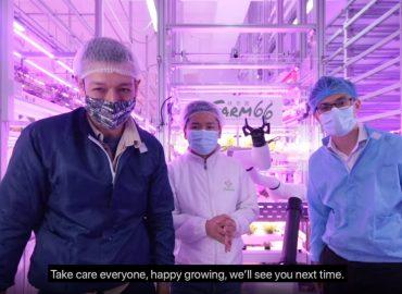 A.I. Future Farming - China Daily